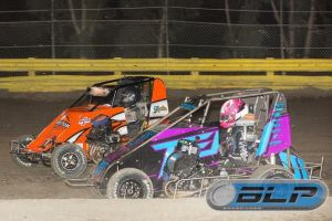 moles non wing ten j lemoore